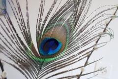 Pauwenveer in boeket bij ouders