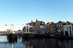 Huizen langs water te Haarlem