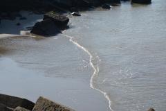 Waterlijn