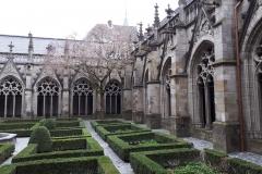 Kloostertuin bij Domkerk