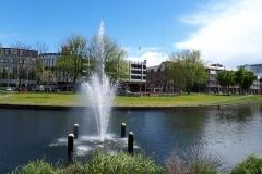 Park Paardenveld
