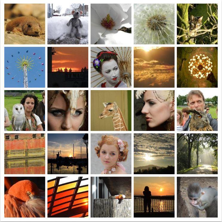 Mozaiek van mijn foto's
