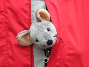 Bekijk portretten van muis Amelie
